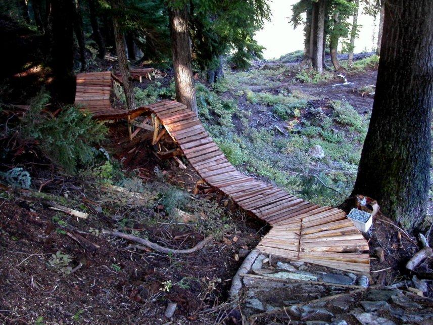 ladder-bridge6cypress.jpg